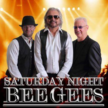 Saturday Night – Bee Gees UK boeken